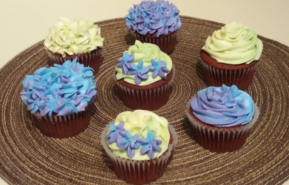 Cupcakes 03212017a